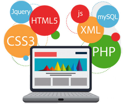 Web Development Services, Company in Noida, Delhi, India